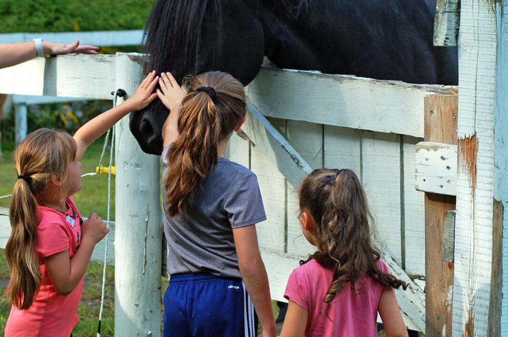 Espace GIOIA - Centre de jour en pleine nature - Les Enfants GIOIA